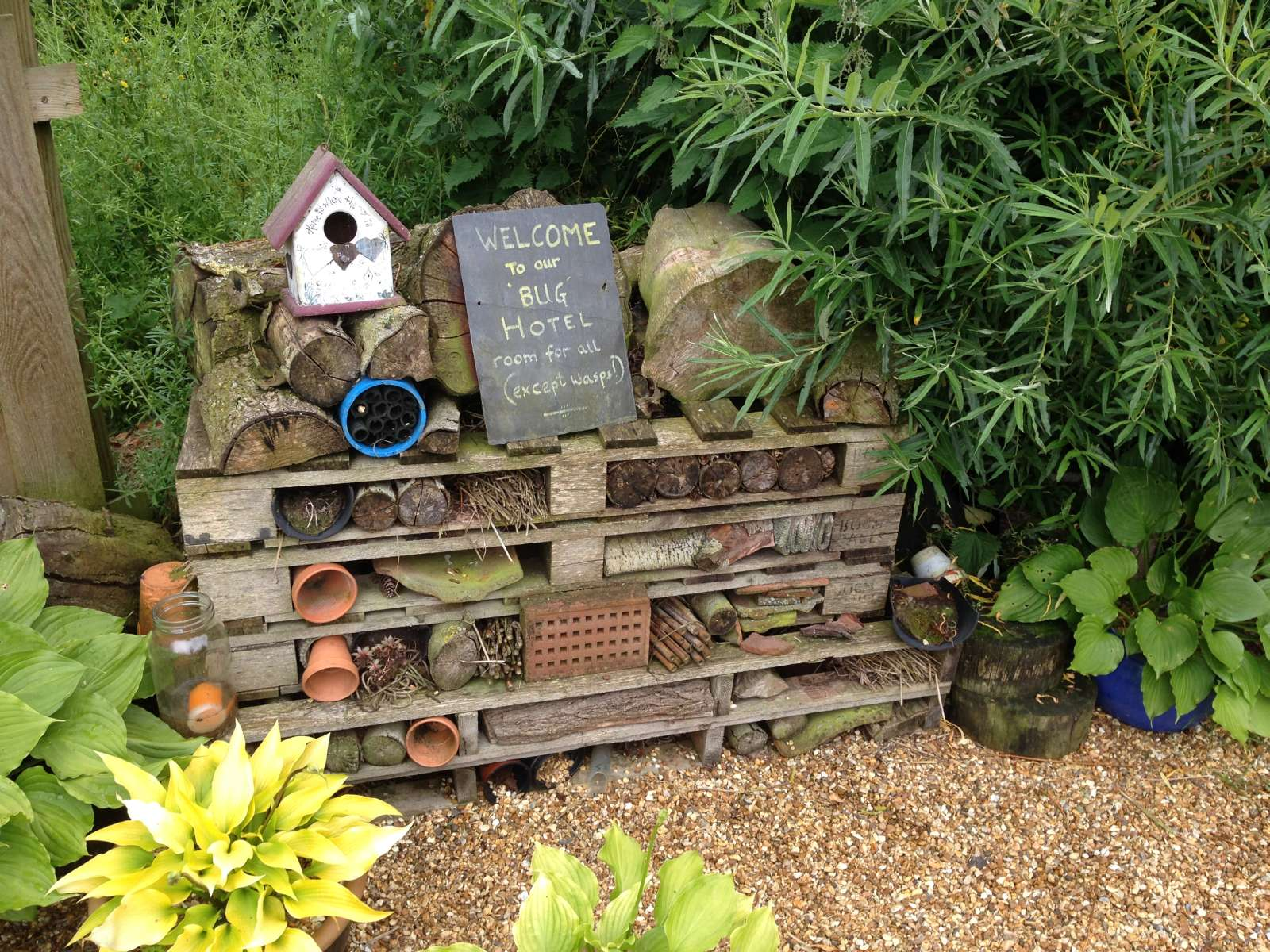 Build a Bug Hotel – 24th May