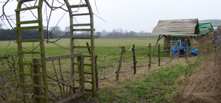 Post and rail fence Ling's Meadow style